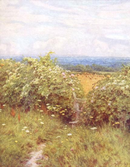 Along The Pilgrims Way. Helen Allingham 1848-1926